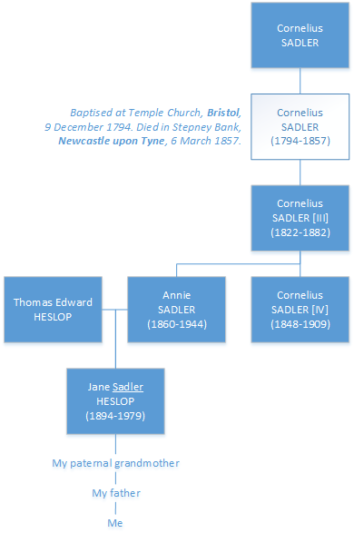 Sketch family tree of the Sadler family showing four generations named Cornelius.